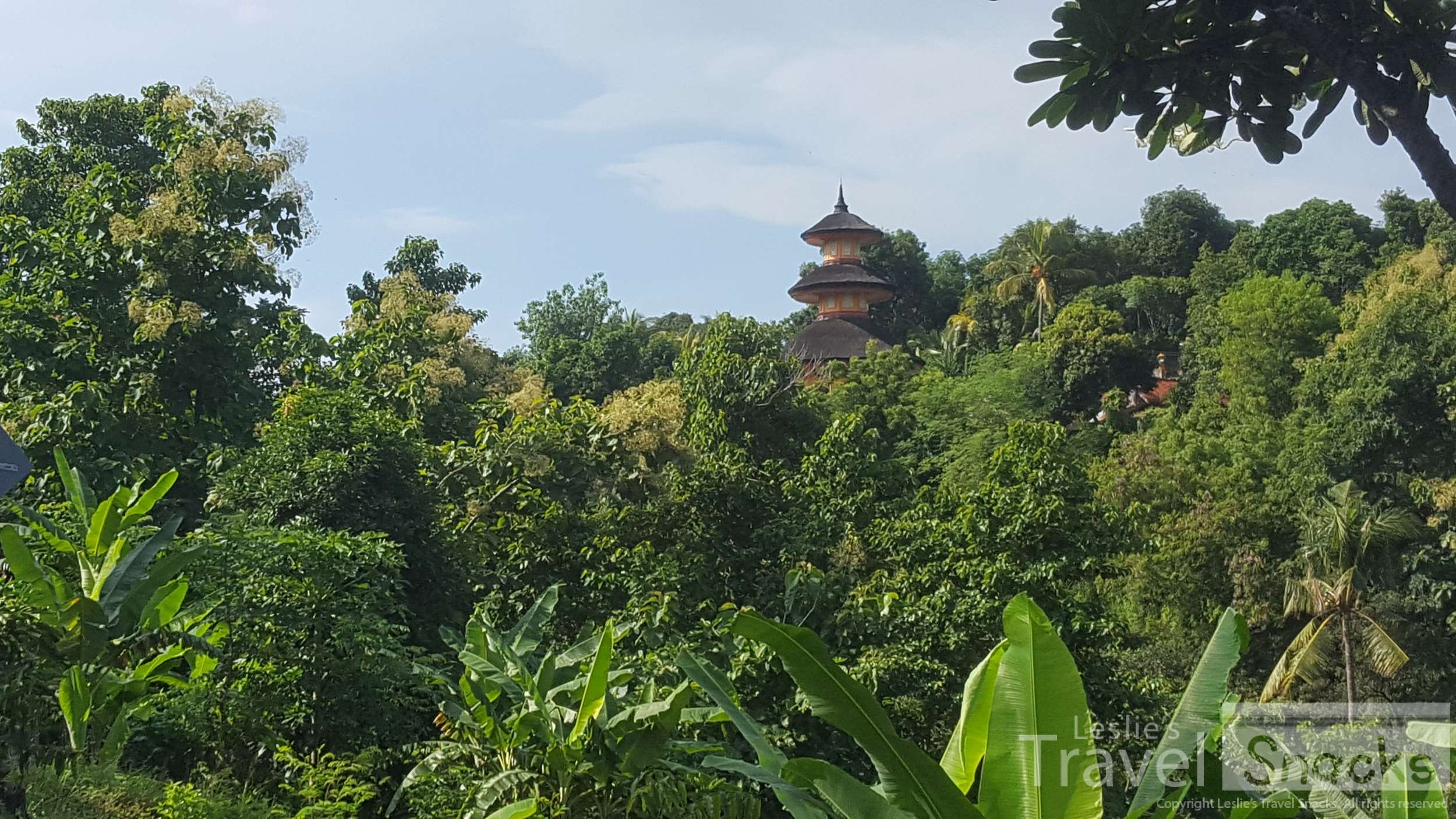 Such a pretty drive barely up into the hills. That's the pagoda that's inside Vihara.