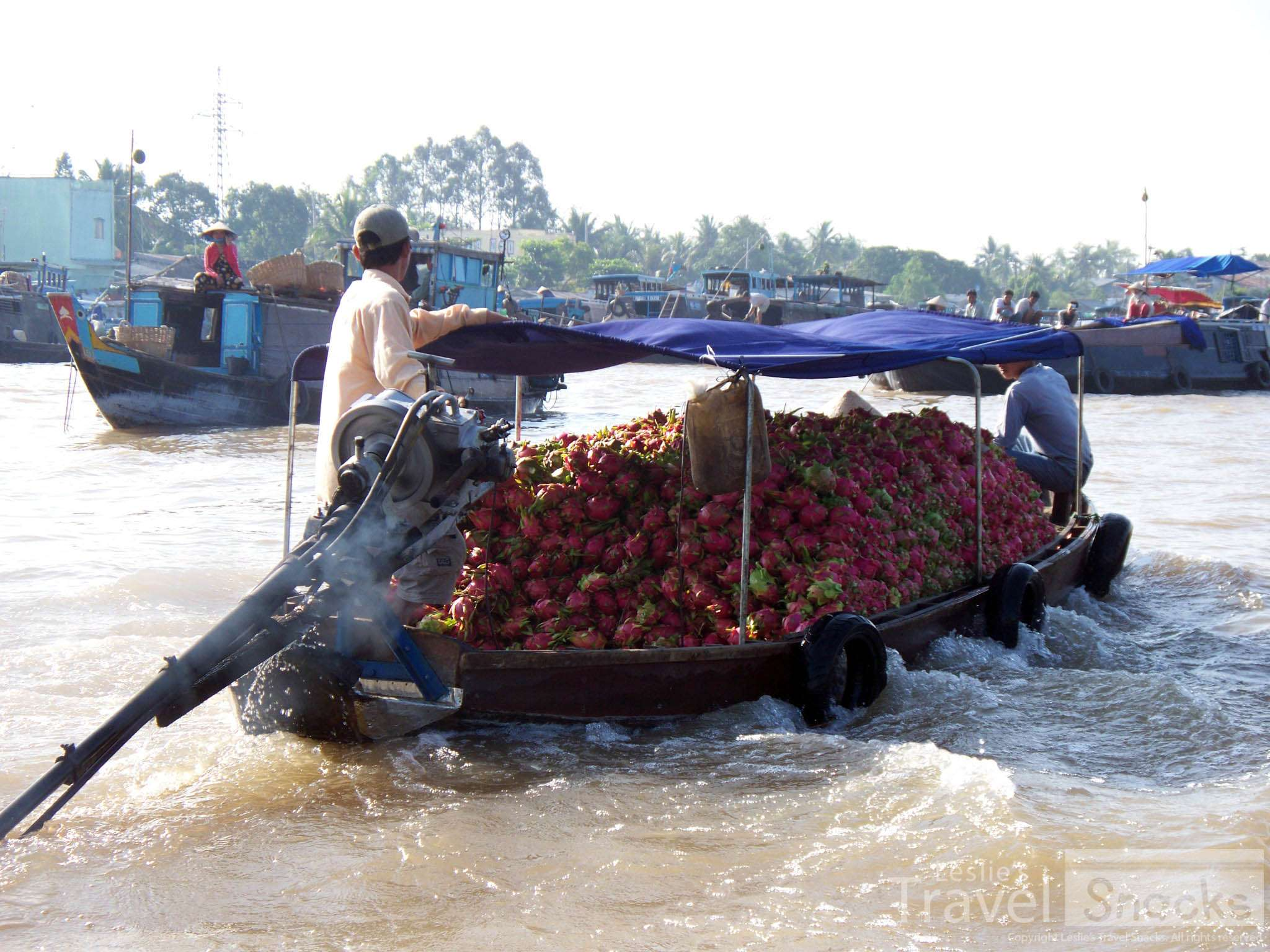 Boat full of dragon fruit.