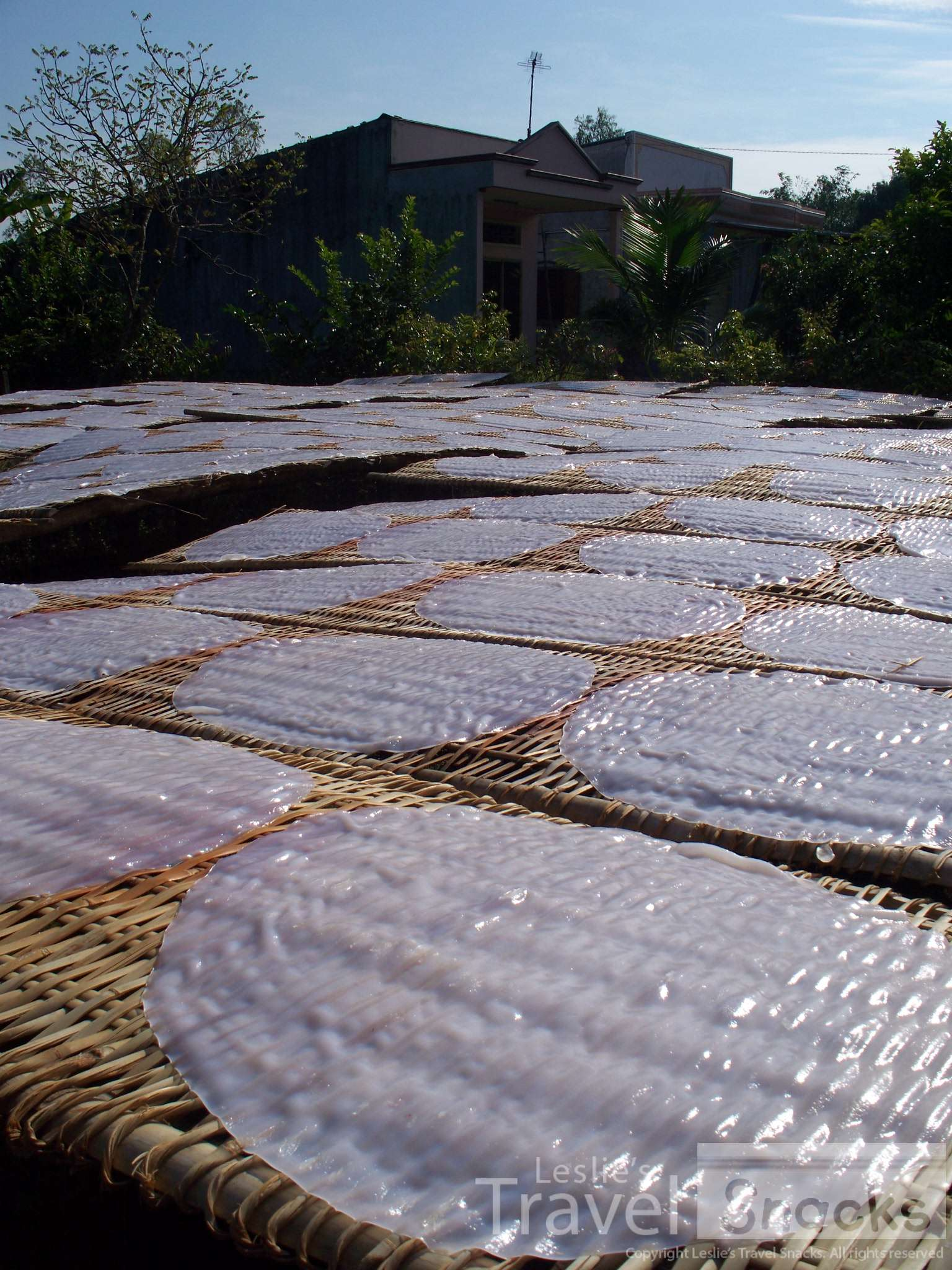 Drying rice papers.