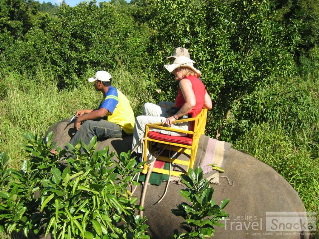 Riding elephants is usually a no-no for tourists.