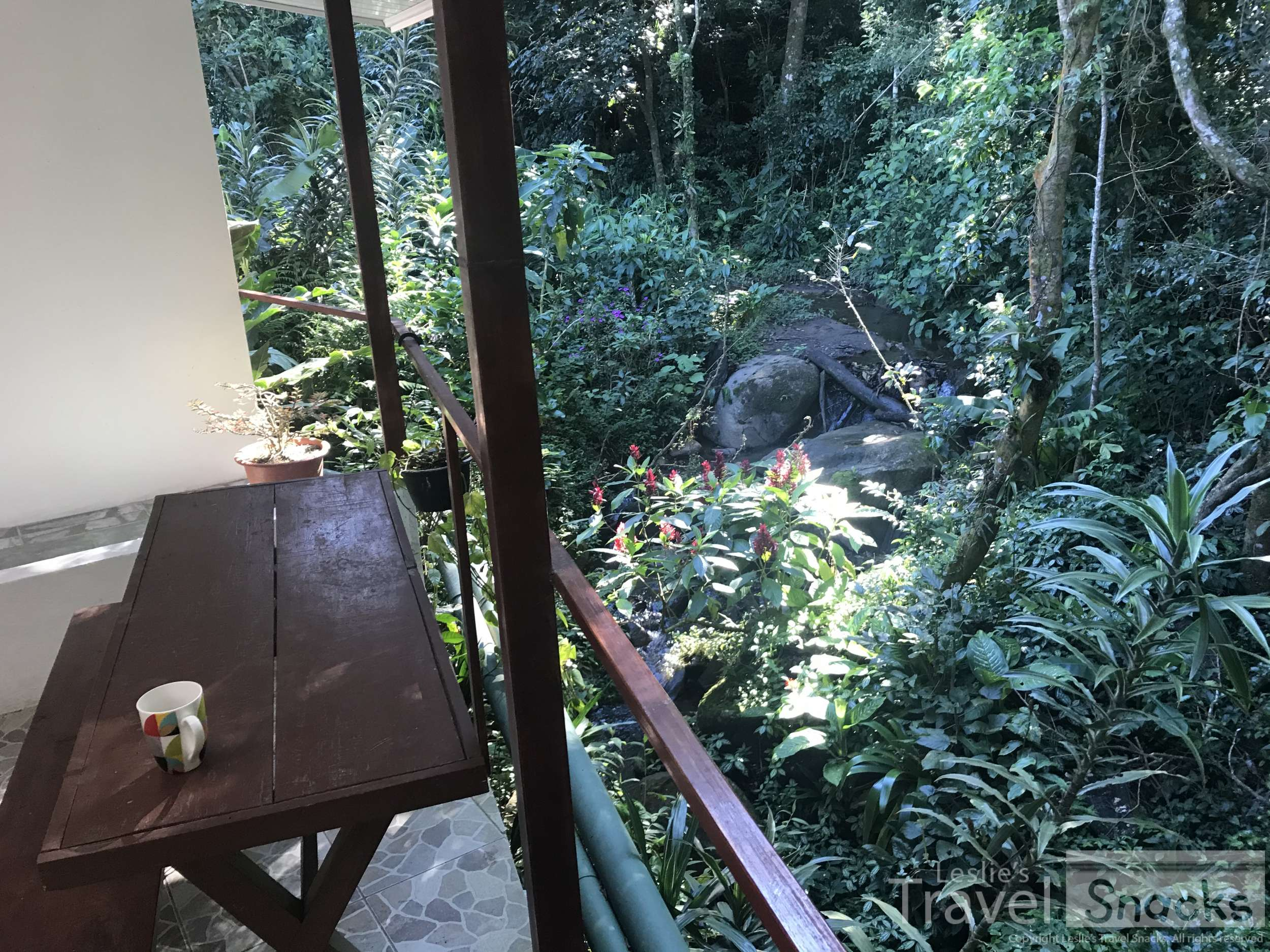 Wow my private patio right over the stream and looking out into the rain forest!