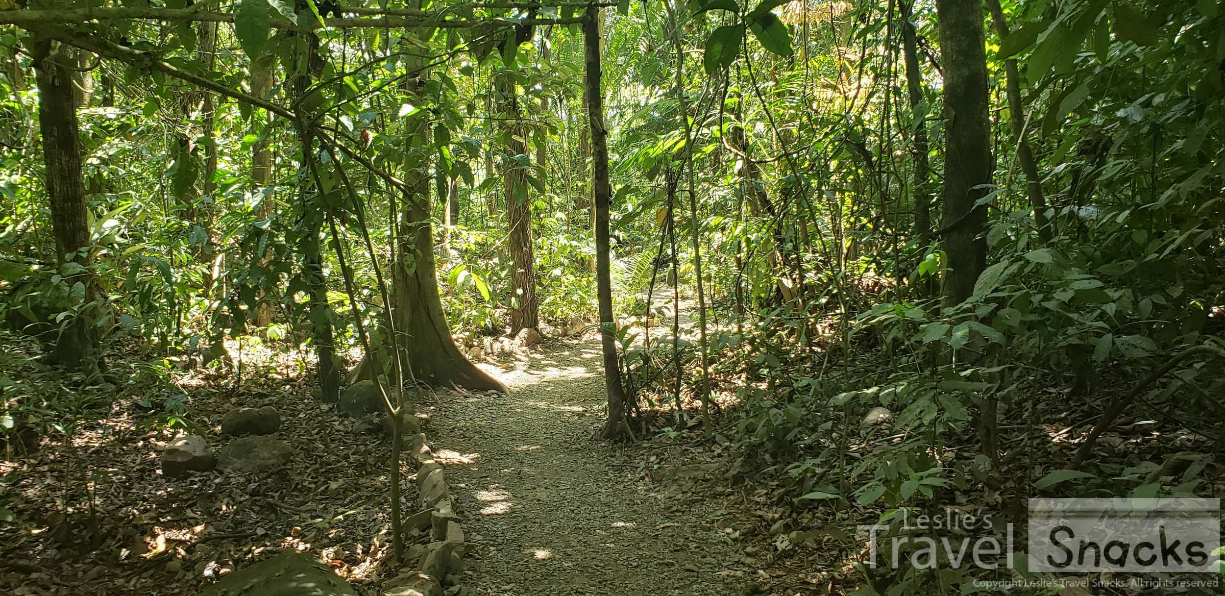 The trail is nice and flat and easy. You just have to maneuver over some rocks near the end.